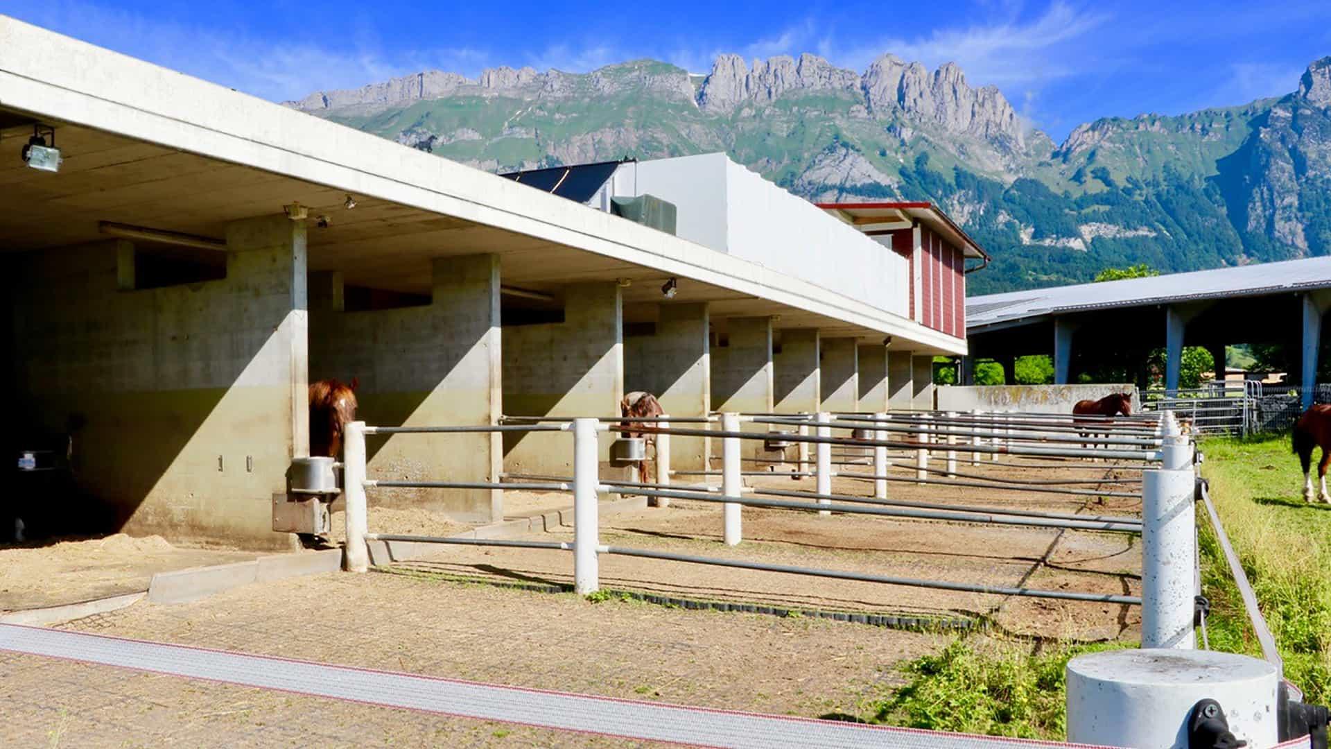 Westernreiten Schweiz - Paddock-Boxen